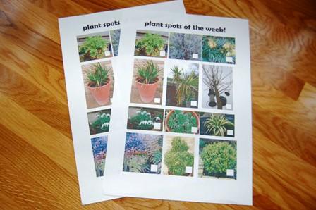 Plant spotting sheets